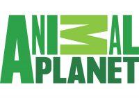 Animal Planet (USA)